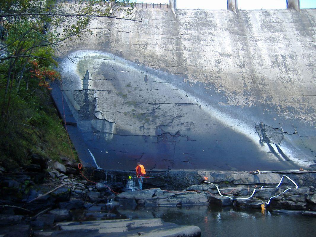 One Bridge dam swinging cock
